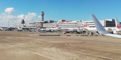 2021.8 JAL羽田↔広島搭乗記