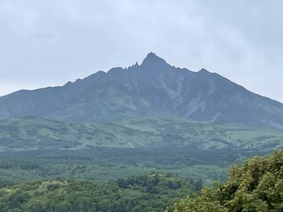 利尻島と礼文島、(利尻島観光)