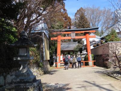 ふれあいハイキング 祝園神社(Hosono Shrine, Seika, Kyoto, JP)