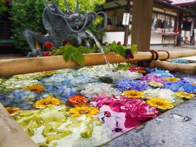 空いた時間に栃木の寺社・御朱印巡り、花手水を見られるところもあります