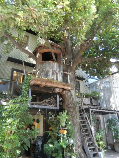 素敵なカフェを探しに…。広尾へ。まるでトムソーヤの冒険。