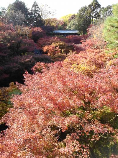 駅から紅色の散歩・・・京都
