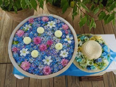 【花手水巡り】初めての試み、あしかがフラワーパークの花手水もとても綺麗だった!