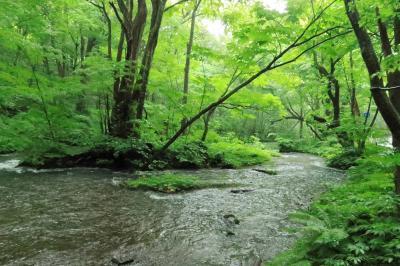 地の涯の四国・西予から青森・蔦温泉1泊での旅。八甲田・奥入瀬渓流