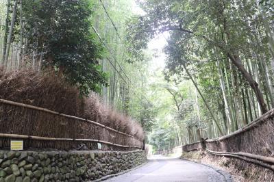 京都、滋賀の旅①