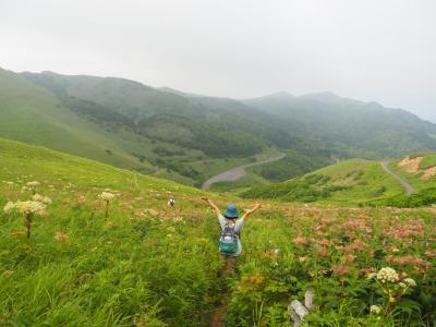北海道離島の旅 その3 憧れの花の浮島礼文島で自然いっぱいのお花畑をトレッキング