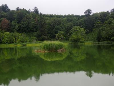 北海道ツーリング 29日目 利尻島を周遊しました。