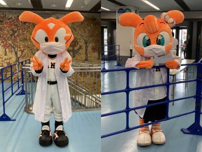 パラリンピックが終わってからのブルーインパルスと東京ドームでワクチンの副反応が(´・ω・`)