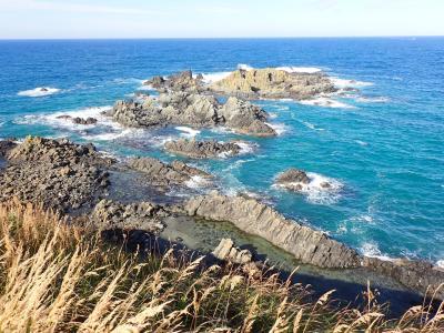 北海道ツーリング 32日目 「礼文島岬めぐりコース」を歩きました。