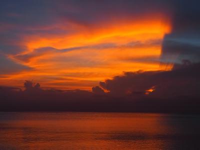 真夏の八重山諸島 夏旅2021 西表島2編