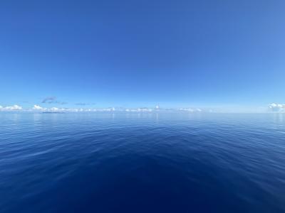 2021 ベタ凪ツルツルの慶良間諸島でダイビング
