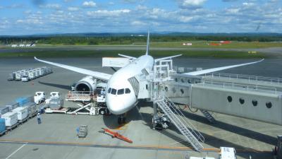 ANA国際線用機材搭乗目的 札幌1泊2日旅【ANAラウンジ利用&飛行機ウォッチングなど編】
