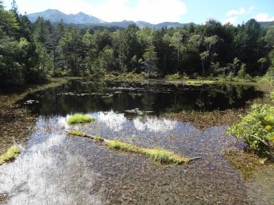 乗鞍高原 山と温泉旅・その1.乗鞍ゆうゆうきっぷ+牛留池&善五郎の滝トレッキング。