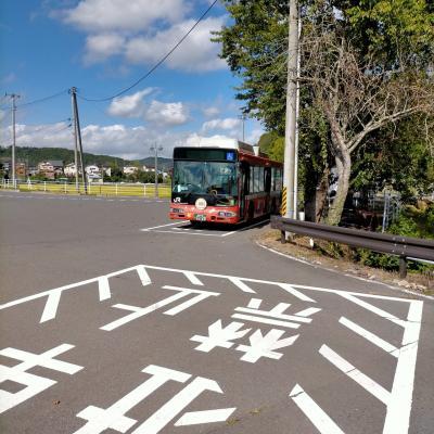 更新!【短文】バスに乗って、バスに乗りに行く。 ~BRT乗り継ぎ紀行~