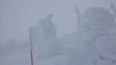 年末年始守ろう心身の健康!厳寒の宮城山形をまわってみた(3)日本海側大寒波で蔵王の樹氷と温泉楽しむ
