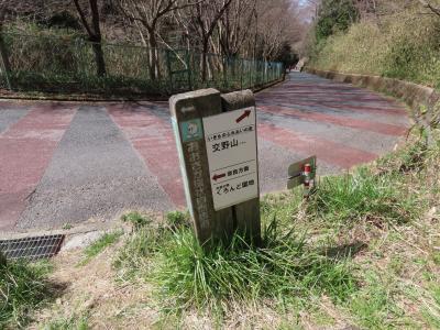 大阪 交野山 こげらの小路(Kogera Path, Kono-zan Mountain, Osaka, JP)