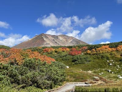 2021 秋 旭岳 日本一早い紅葉を見に行く ラビスタ大雪山 勇駒荘 旭岳ロープウエイ 姿見池