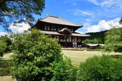 奈良県:多聞城、高取城(その1)