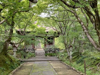 京都さんぽ  嵯峨野めぐり 清凉寺から常寂光寺へ。