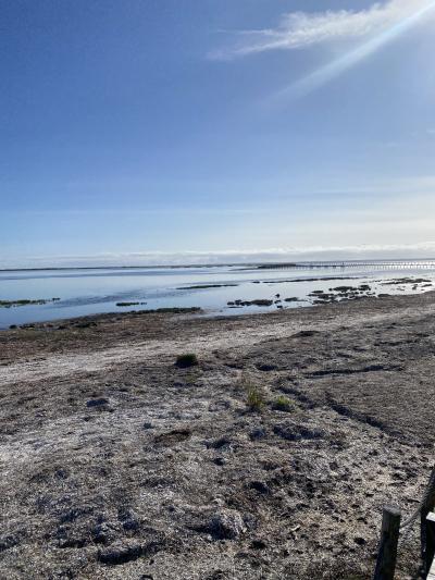砂嘴を歩こう~野付半島トドワラ~