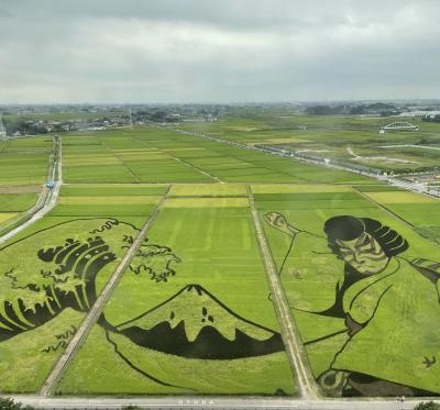 行田巡り~花手水と田んぼアートと忍城