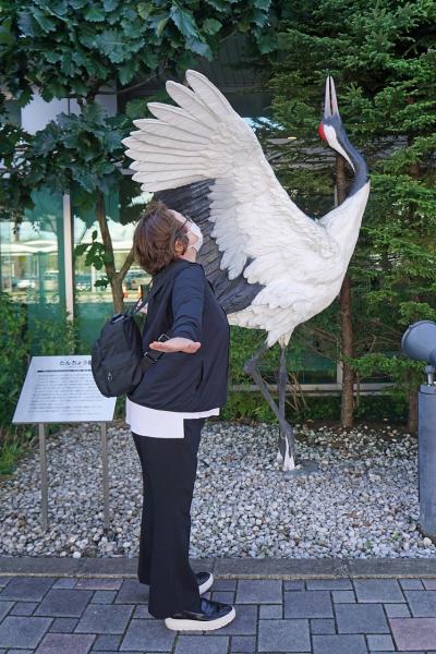 トラピックス 釧路で過ごす10日間(16)釧路空港から羽田空港への旅のエピローグ。