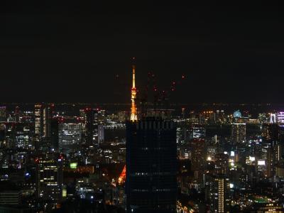 2度目のザ・リッツ・カールトン東京 さよなら東京タワービュー