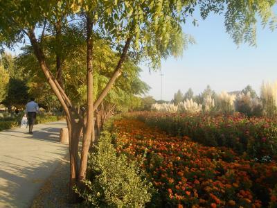 祝!イランからの帰国者に対する検疫所指定宿泊施設滞在の措置解除 シラーズ最大のエコパークがいい