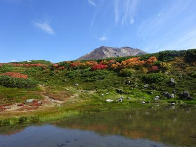 旭川と札幌近郊、絶景の旅~家族旅行~