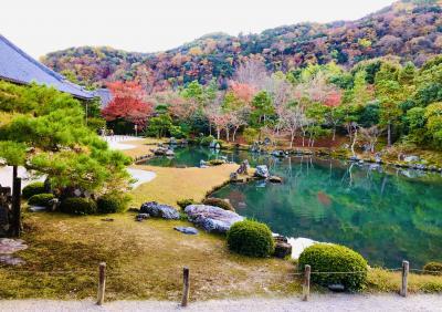 ◆ 趣ある庭園が魅力 天龍寺 ◆
