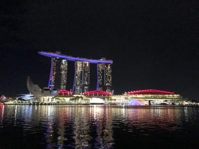 大好きシンガポール☆夜景編 イチオシ!ガーデンラプソディにリバークルーズ、スポットいろいろ♪