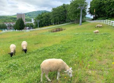 夏休み2021!初めての北海道は留寿都村へ。大自然のウエスティンルスツリゾートで過ごす2泊3日の旅②