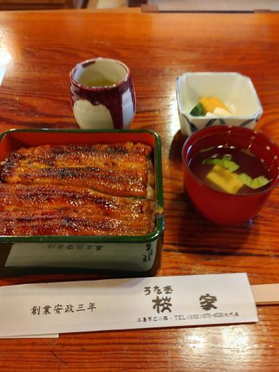 三島まで鰻を食べに行きました2