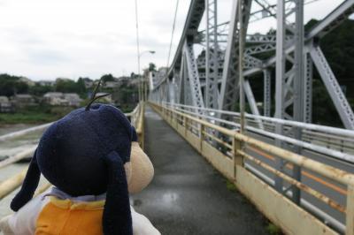 グーちゃん、台風&コロナ禍の中、浜松合宿へ行く!(二俣城跡でカマキリ男と一杯!編)