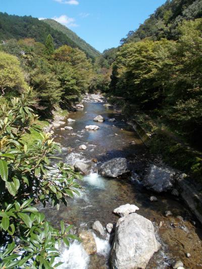 「鳥居本」と「清滝」を散策
