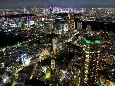 東京ホテルホッピング☆最後はザ・リッツカールトン東京ラウンジステイ♪♪ほぼホテルだけで過ごしたキラキラな1日☆彡