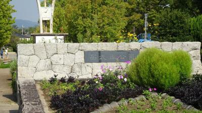 西武庫公園の分区園に咲くお花を見せてもらいに行きました その02。