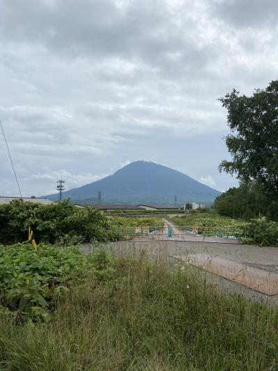 倶知安から千葉へ帰る(北海道10泊旅行NO.12)