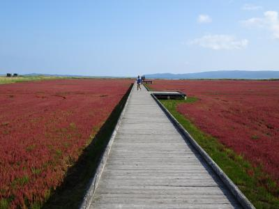 また来た道東(4) 能取湖、サロマ湖周辺散策 (2021年9月)