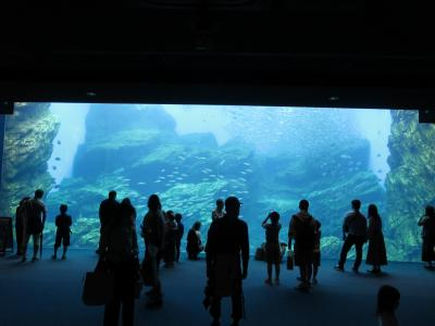 2021AUG「JR東日本ダイナミックレールパックで行く宮城家族旅」(3_仙台観光地巡り_ハ)