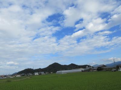 ミニサイクリング 大鉢山