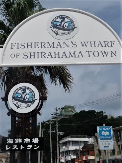 南紀白浜27 FishermansWHARF白浜・牟婁の湯‐電動自転車で ☆番屋-天然真鯛兜煮定食を