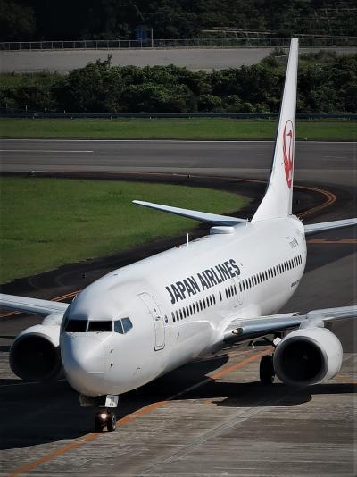 南紀白浜空港 受付1番8:10 展望デッキへ ☆JAL搭乗機/羽田空港⇒8:40到着を出迎え