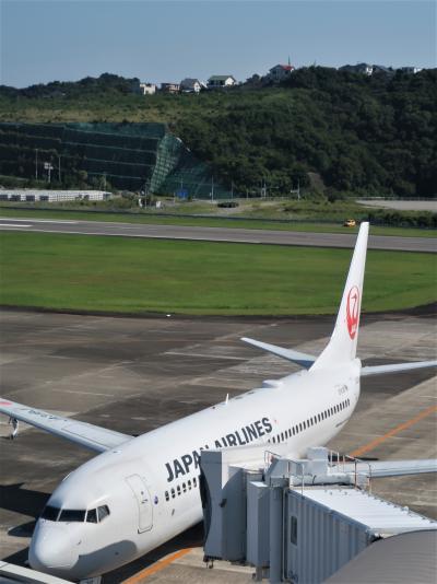 JAL212便 南紀白浜空港 9:15発/羽田空港行 56A  ☆白浜温泉街-串本を俯瞰し
