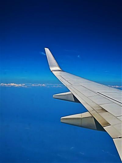 羽田空港10:25着  JAL212便 南紀白浜空港~75分 ☆伊豆大島・京浜工業地帯付近を通過し