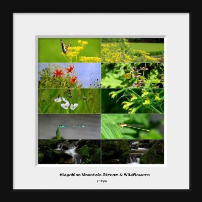 ◆玉川村~野の花咲き競う山里と東野の清流