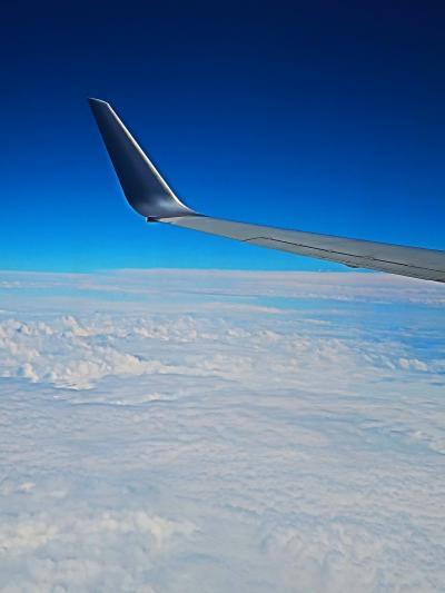 JAL261便 機上~ 空-雲-地表の光景 ☆三河湾-関西空港-大阪湾-淡路島?辺りを通過し