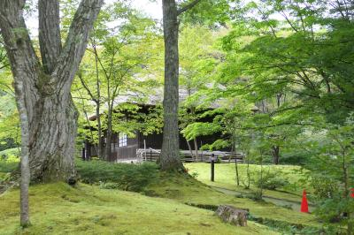 安心して旅行ができる 栃木旅湯西川 キノコ好きにはたまらない モヤモヤしている旅