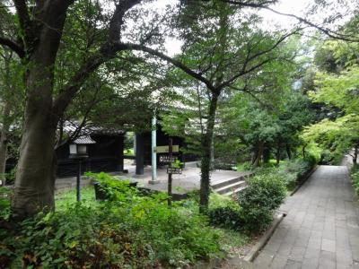どんな街でも面白い遊具のある公園が一番!【親子で東京往復記2021年9月編その3】