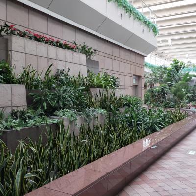 羽田空港散策です ターミナル1
